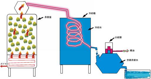 水蒸気蒸留法イラスト1